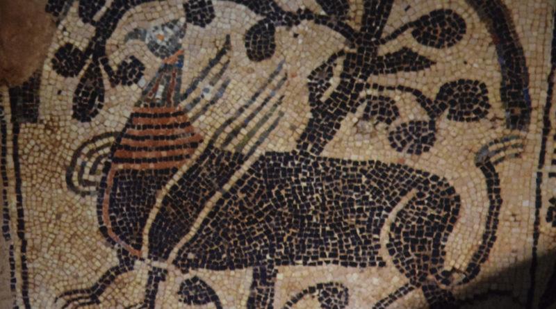 Tour del Romanico da Fruttuaria a Vezzolano